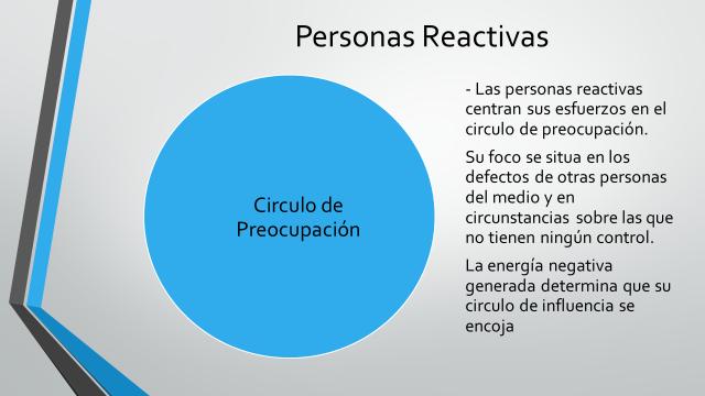 Grafico 12