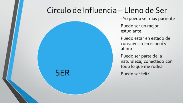 Grafico 16
