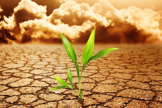 resiliencia-arte-superar-adversidades_ediima20160302_0208_1